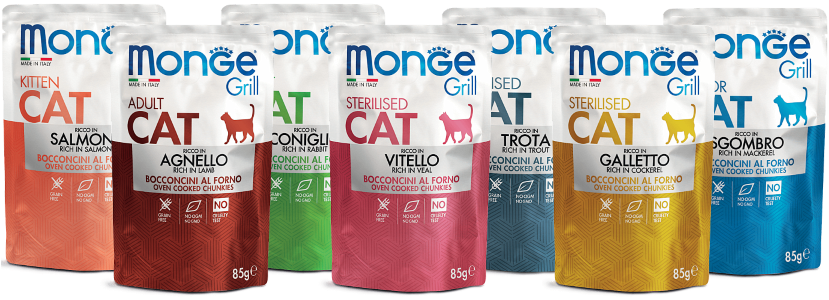 Monge Grill Cat