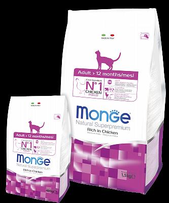 Monge Adult Cat