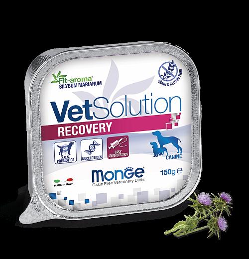 Monge VetSolution Recovery Dog